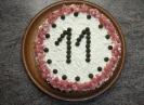 Geburtstag A-Wurf 11 Jahre_1