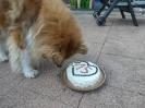 Geburtstag Merlin 15 Jahre_4