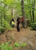 Wanderung Schusterpfad in Hauenstein 2021_1