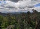 Wanderung Schusterpfad in Hauenstein 2021_2